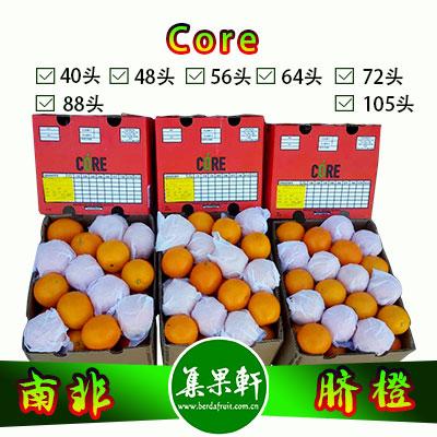 南非进口脐橙Navel品种 | Core牌15公斤