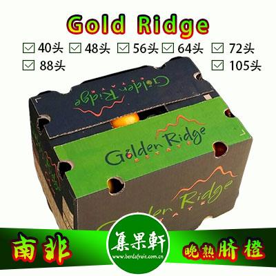 南非Gold Ridge牌进口晚熟脐橙