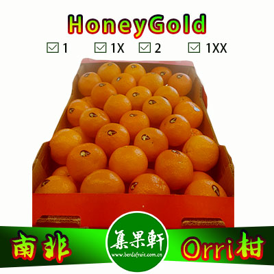 南非进口HoneyGold牌Orri柑