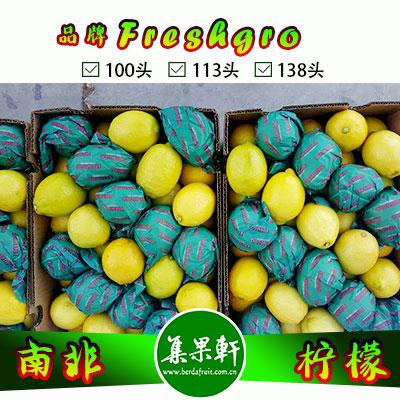 南非Freshgro牌柠檬138头