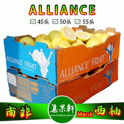 南非白肉西柚Marsh品种ALLIANCE品牌17公斤50头