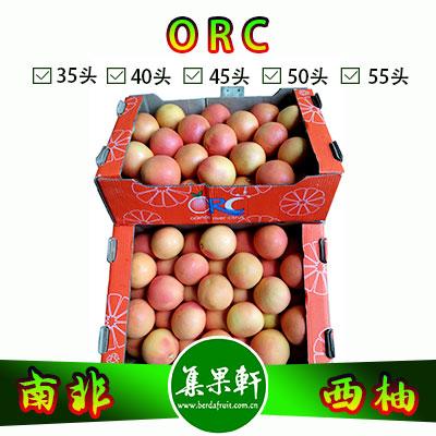南非进口红宝石西柚Star Ruby品种 | ORC牌17公斤40头规格