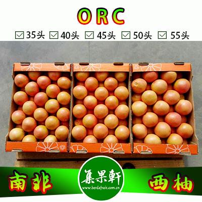 南非进口红宝石西柚Star Ruby品种 | ORC牌17公斤35头规格