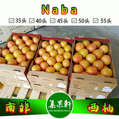 南非进口红宝石西柚Star Ruby品种 | Naba犀牛牌17公斤40头