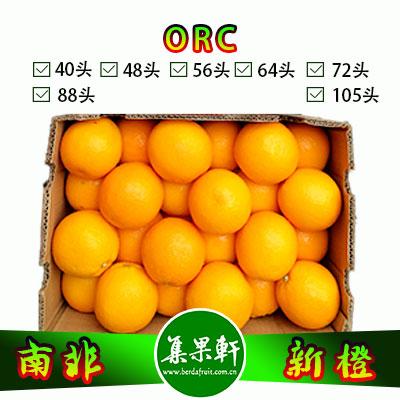 南非ORC新橙64头