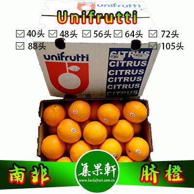 南非进口脐橙Navel品种 | unifrutti牌15公斤48头规格