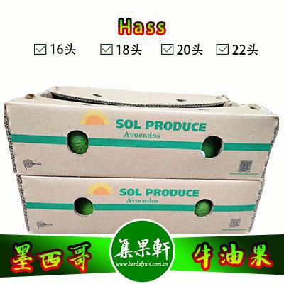 墨西哥进口牛油果Hass品种 | 6 公斤24头规格