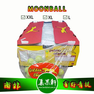 南非进口有籽青提批发,MOONBALL月亮球/兵乓球葡萄货源,规格XL4.5公斤9斤装