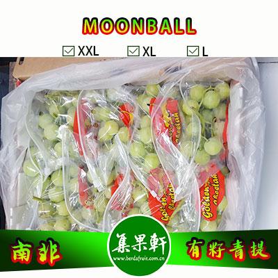 南非进口有籽青提批发,MOONBALL月亮球/兵乓球葡萄货源,规格XXL4.5公斤9斤装