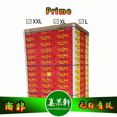 南非进口无籽青提批发Prime普莱姆品种货源,金豹鲜果品牌,规格X L,重量4.5公斤,供应时间1月-3月