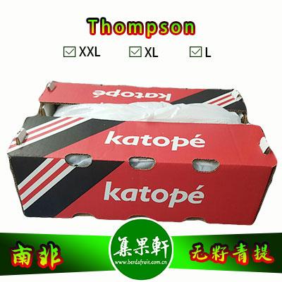 南非进口Thompson无籽青提汤姆森品种货源批发,品牌katope 重量4.5公斤规格L,5箱起批