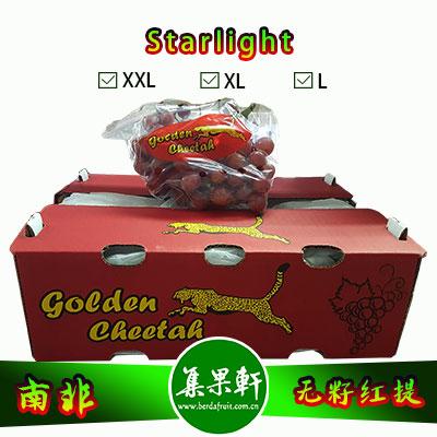 南非进口无籽红提批发Starlight星光品种货源,金豹鲜果牌,重量4.5公斤,XL规格,一级货源供应