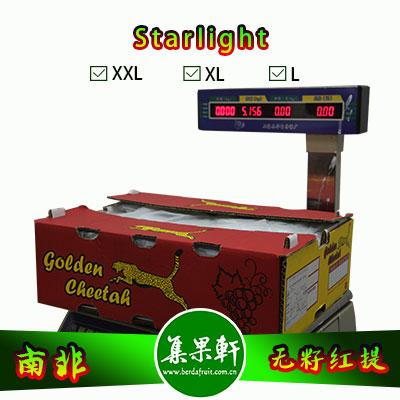 南非进口无籽红提批发Starlight星光品种货源,金豹鲜果牌,重量4.5公斤,L规格,一级货源供应