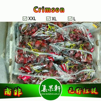 南非进口Crimson克瑞森葡萄货源,mooi牌无籽红提批发,重量4.5公斤,规格XL,一级货源供应,鲜食口感佳葡萄