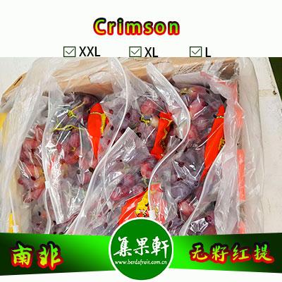 南非进口Crimson克瑞森葡萄货源,金豹鲜果牌无籽红提批发,重量4.5公斤,规格L,一级货源供应,鲜食口感佳葡萄