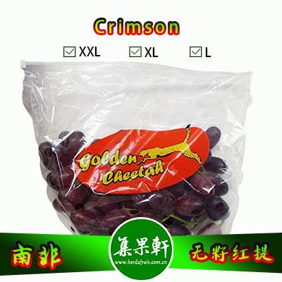 南非进口Crimson克瑞森葡萄货源,金豹鲜果牌无籽红提批发,重量4.5公斤,规格XL,一级货源供应,鲜食口感佳葡萄