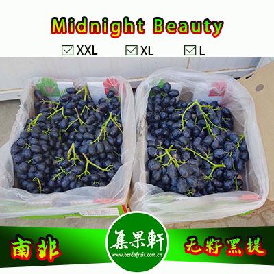 南非进口无籽黑提甜十三/午夜美人Midnight Beauty货源批发,core品牌,重量4.5公斤,规格 XL,甜度高的黑葡萄,品质上佳,价格优惠