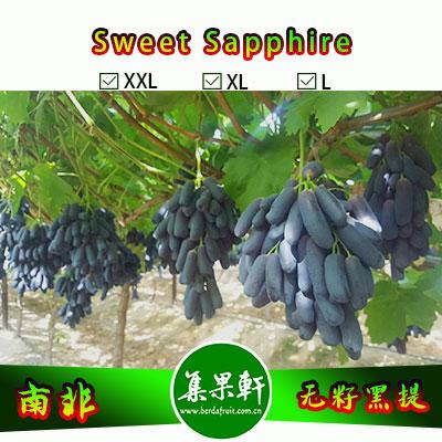 南非进口无籽黑提美人指Sweet Sapphire品种货源批发  金豹鲜果牌,重量4.5公斤,XL规格,货源有限的手指葡萄