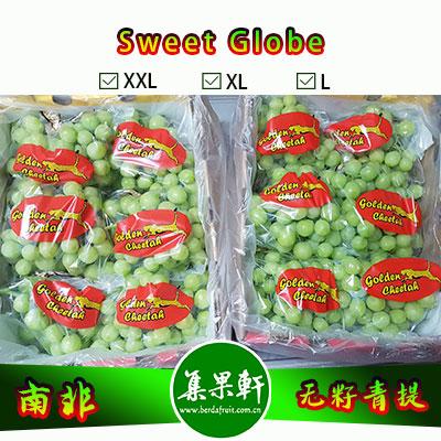 南非进口无籽青提批发新品种甜地球 Sweet Globe货源供应,进口水果行业金豹鲜果品牌,4.5公斤9斤原装,规格L,非香印