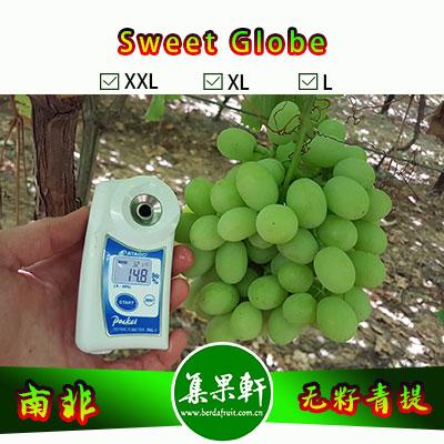 南非进口无籽青提批发新品种甜地球 Sweet Globe货源供应,非香印,进口水果行业金豹鲜果品牌,4.5公斤9斤原装,规格XL
