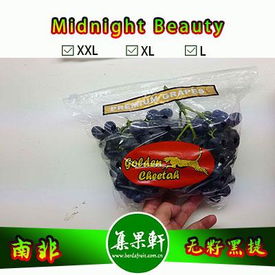 南非进口无籽黑提甜十三/午夜美人Midnight Beauty货源批发,金豹鲜果品牌,重量4.5公斤,规格 L,甜度高的黑葡萄,品质上佳,价格优惠