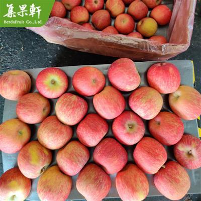 南非进口富士苹果KAPGOLD牌18.25公斤装广州江南水果批发市场价格