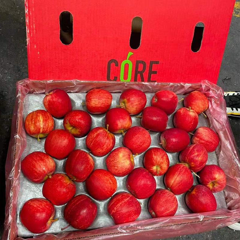 南非进口加力果苹果Royal Beaut品种CORE牌广州江南水果批发市场一级货源